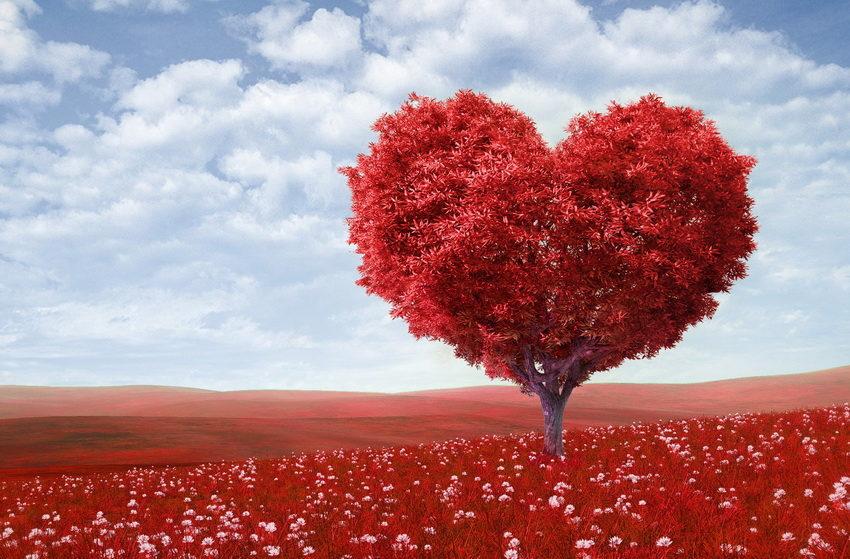 что такое любовь? - значение слова